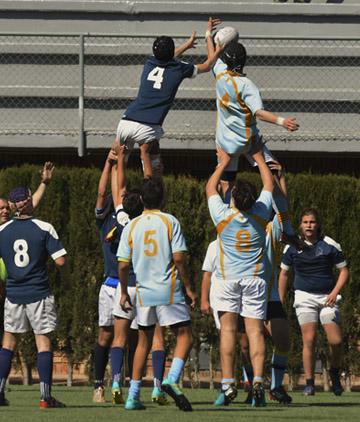club de rugby vilanova