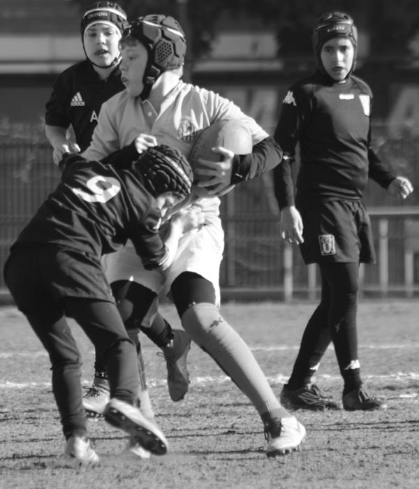 escola de rugby vilanova